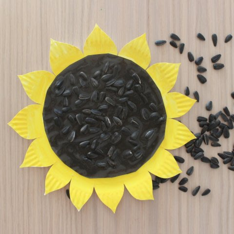 Make with your kid a sunflower of a disposable plate
