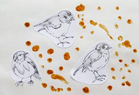 покормите с малышом птиц