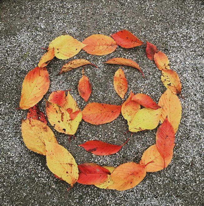 Осенние узоры на асфальте