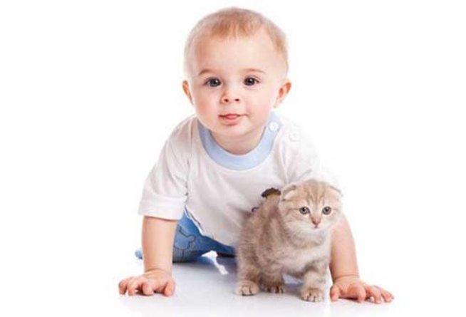 Физиология ребенка восьмого месяца жизни