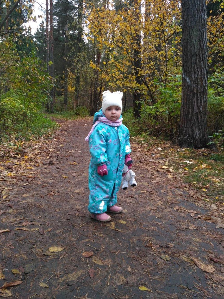 Отчёт по занятию Осенняя прогулка в Wachanga!
