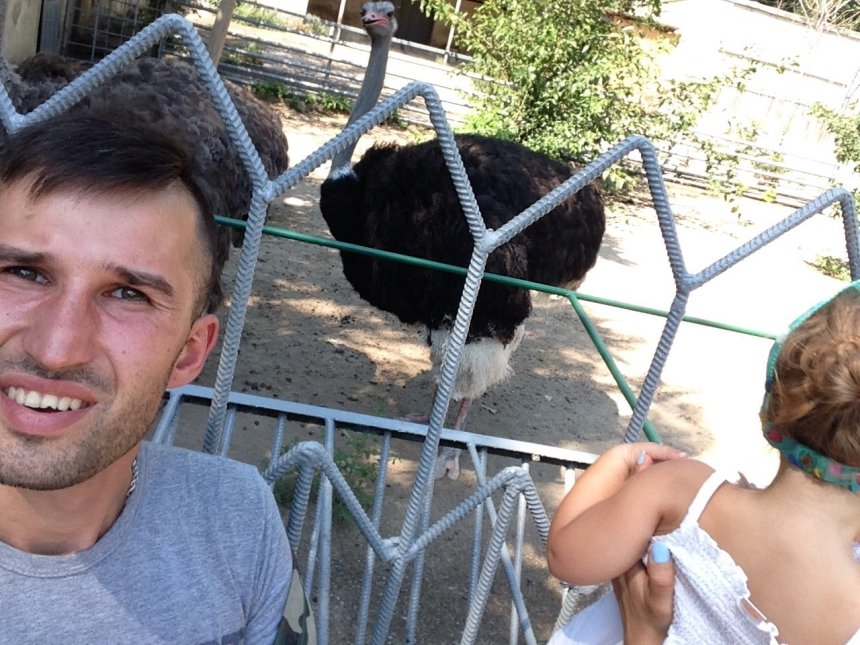 Отчёт по занятию Знакомимся с домашними животными в Wachanga!