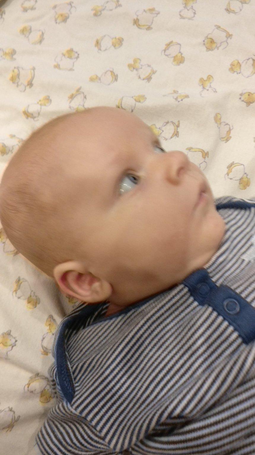 Отчёт по занятию Весёлые потешки для малыша в Wachanga!