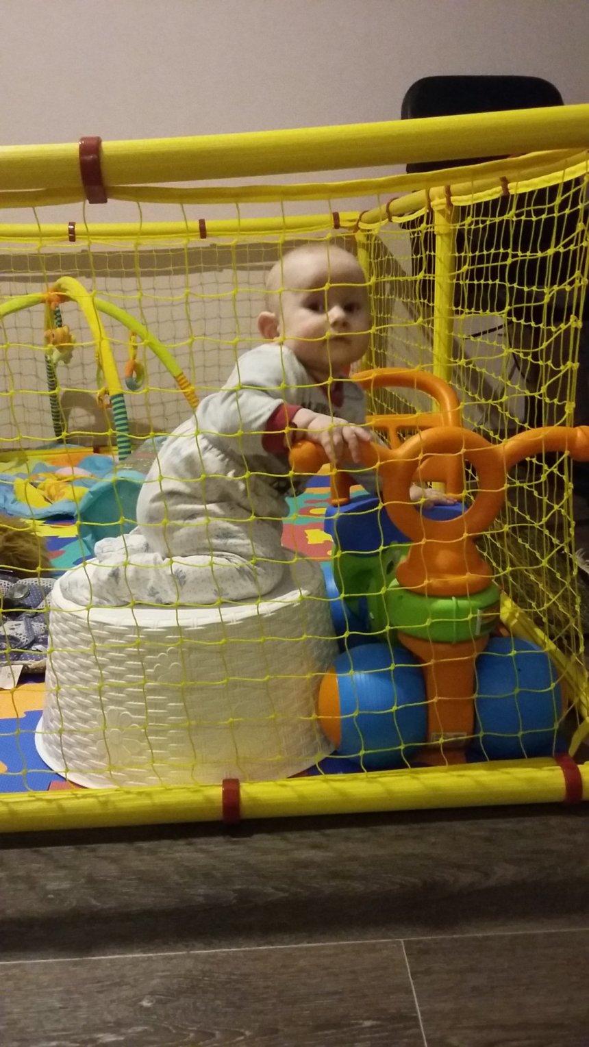 Отчёт по занятию Навыки и умения малыша в восемь месяцев в Wachanga!