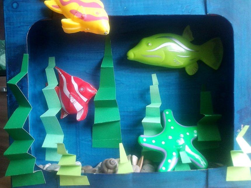 Отчёт по занятию Морское дно в Wachanga!