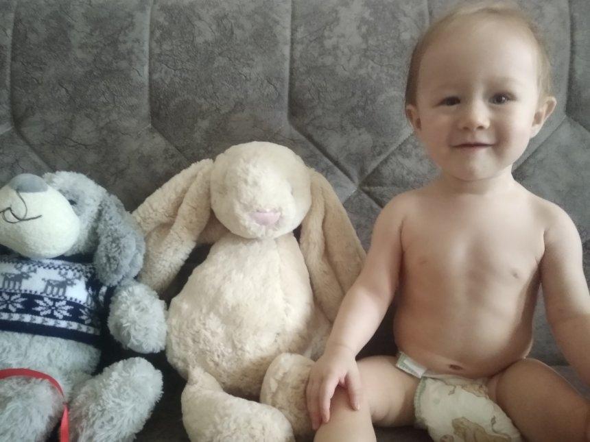 Отчёт по занятию Сидящие игрушки в Wachanga!