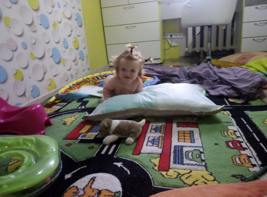 Отчёт по занятию Соорудите для малыша полосу препятствий в Wachanga!