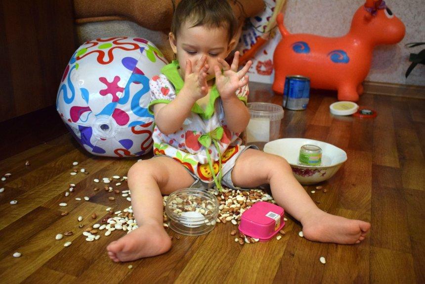 Отчёт по занятию Первые игры с фасолью в Wachanga!