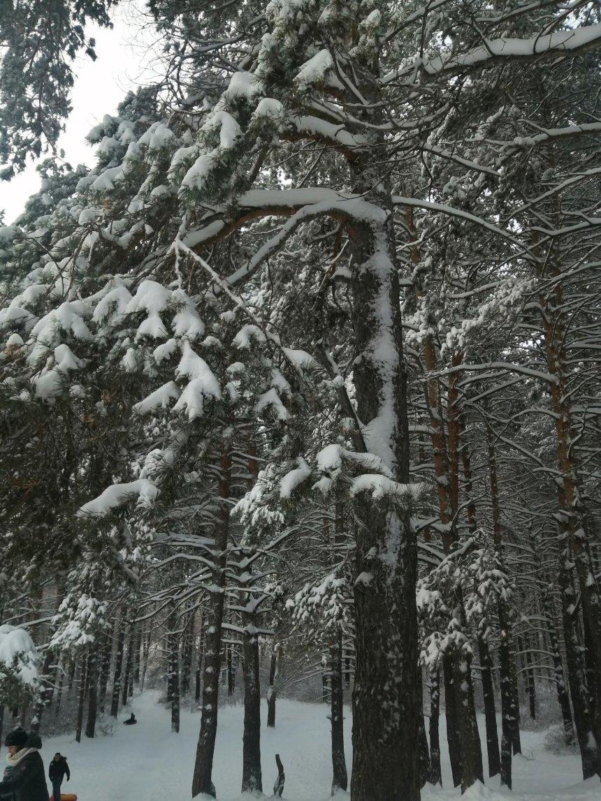 Отчёт по занятию Снежный душ в Wachanga!