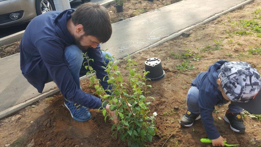 Отчёт по занятию Воспитываем доброту в Wachanga!