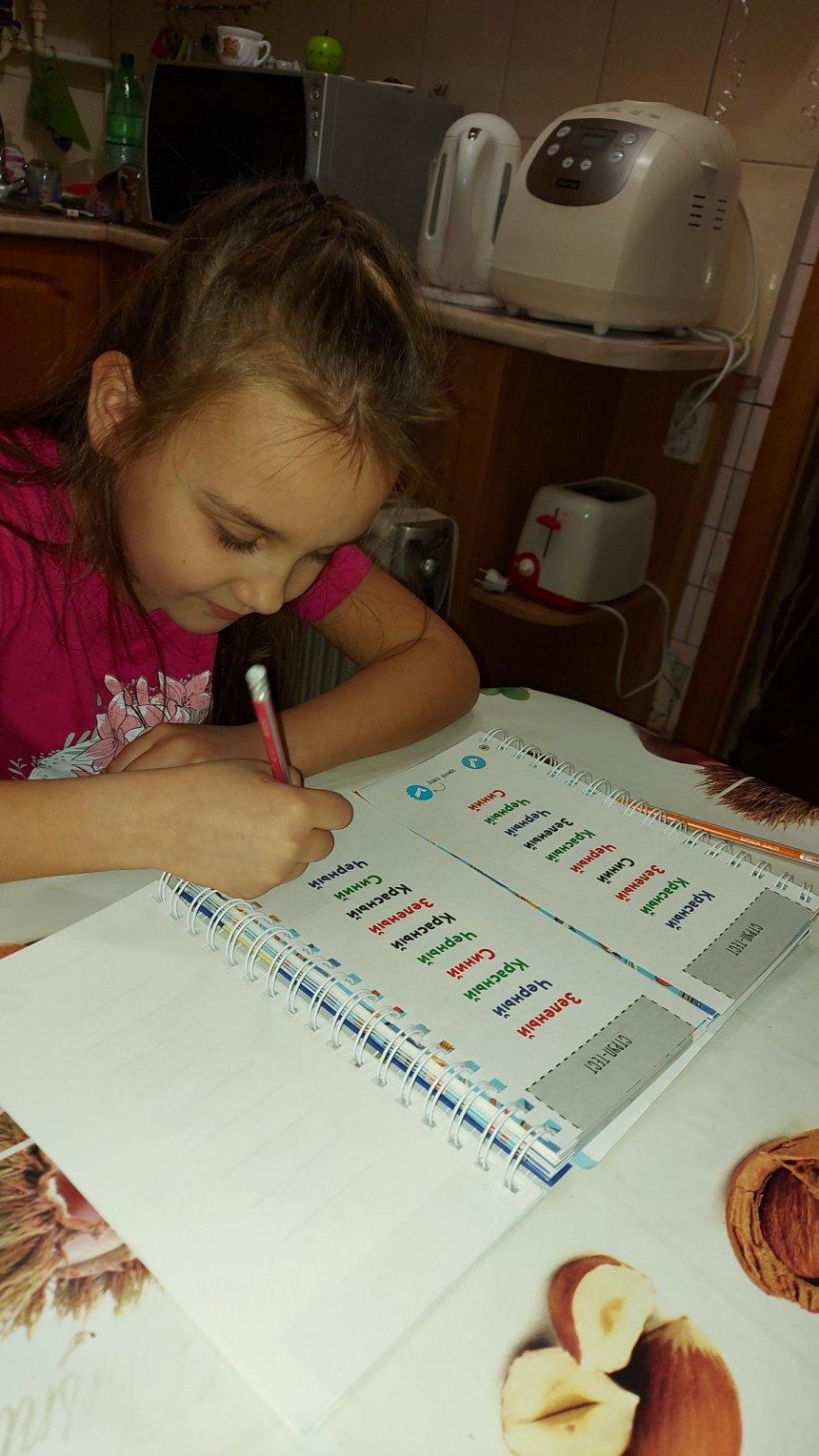 Отчёт по занятию Из детсада в школу в Wachanga!