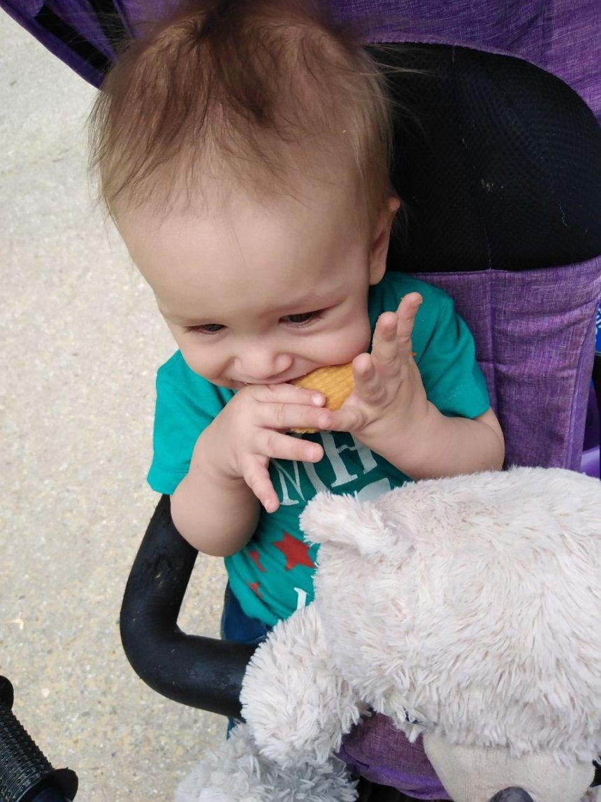 Отчёт по занятию От чего зависит аппетит ребёнка в Wachanga!