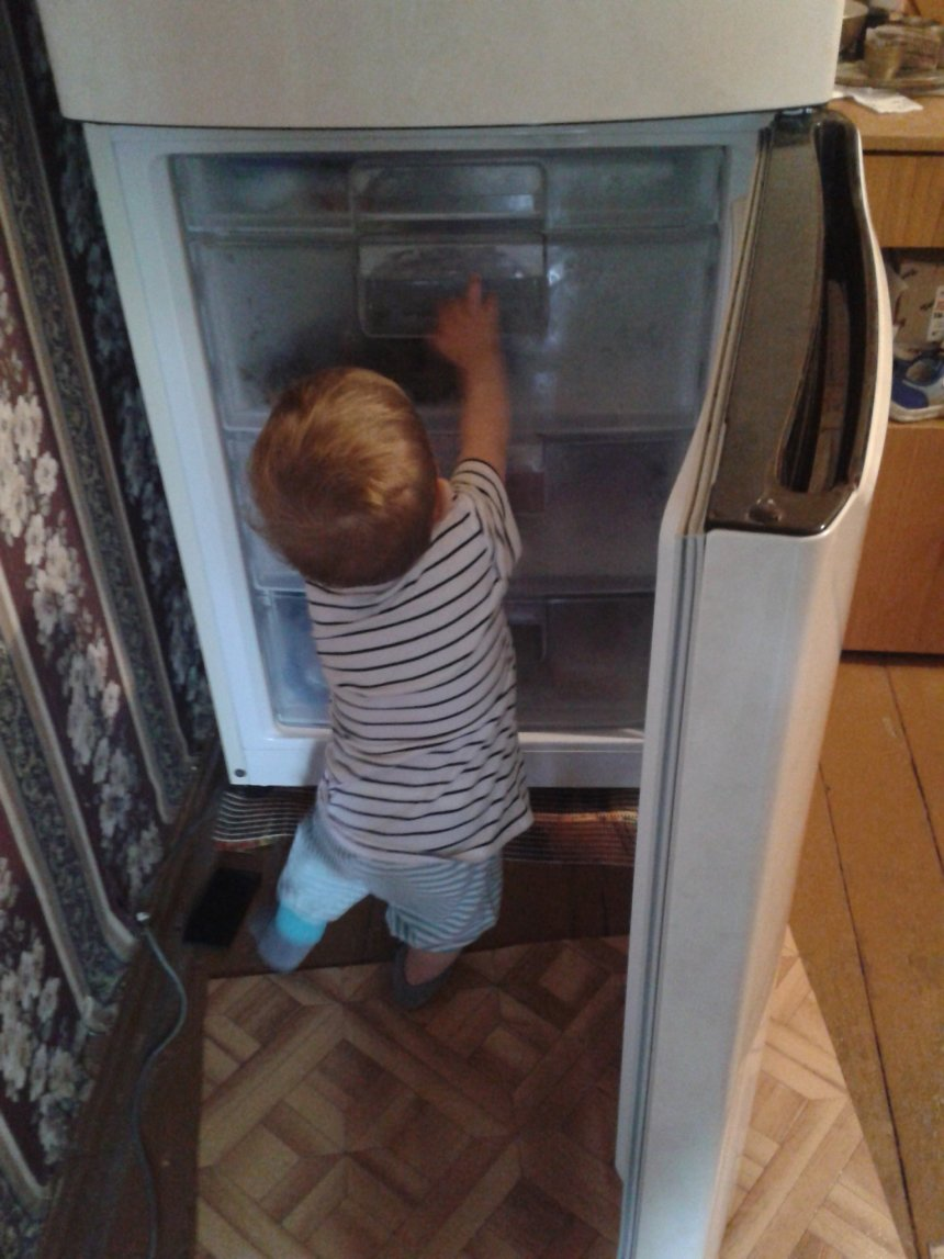 Отчёт по занятию Знакомимся с холодильником в Wachanga!
