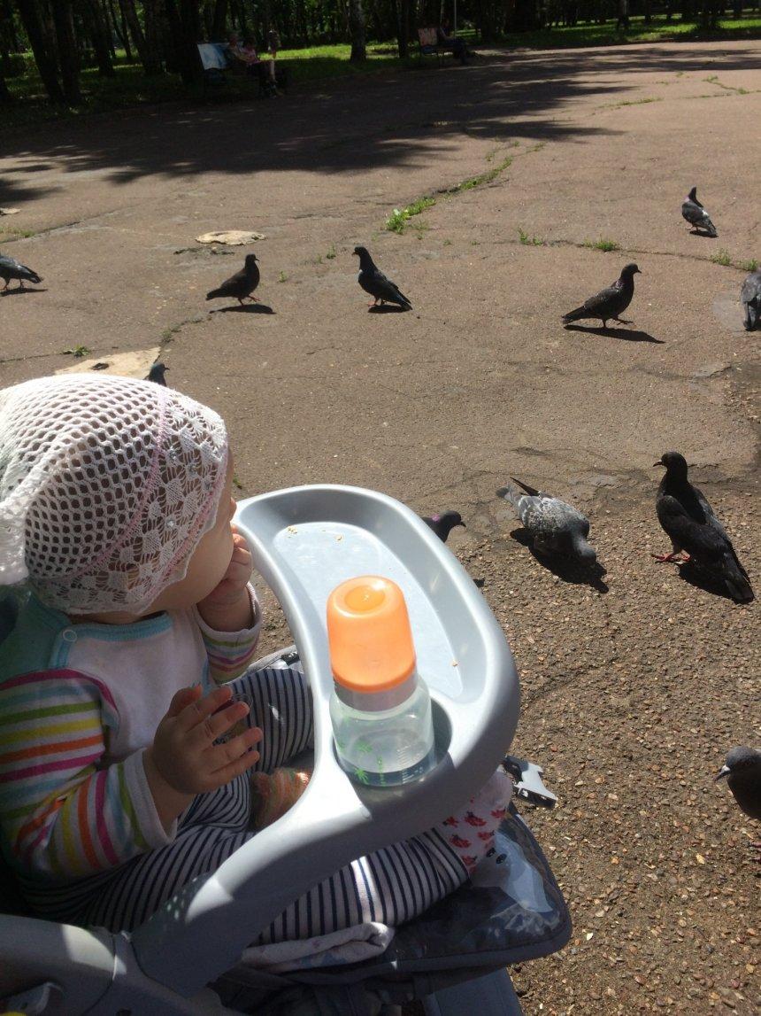 Отчёт по занятию Чем поить ребенка в 6 месяцев в Wachanga!