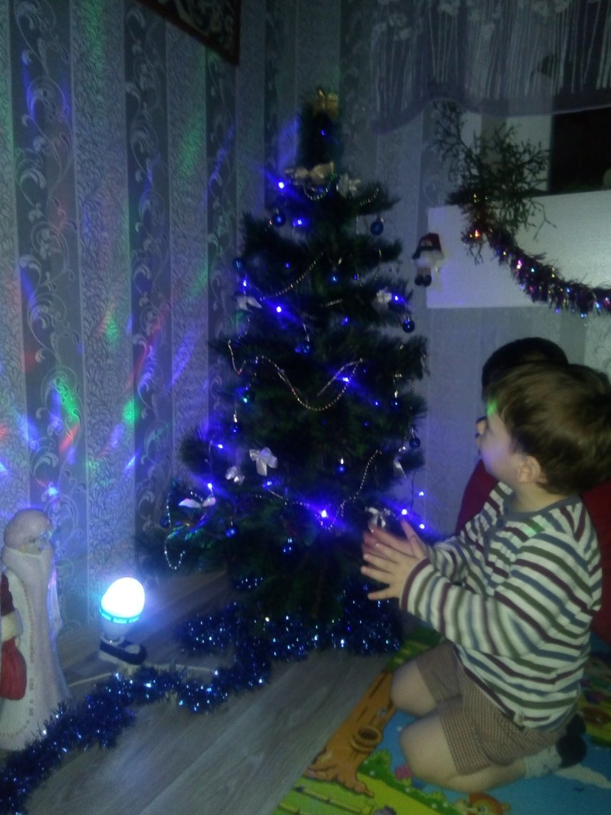 Отчёт по занятию Наряжаем новогоднюю ёлку всей семьей в Wachanga!
