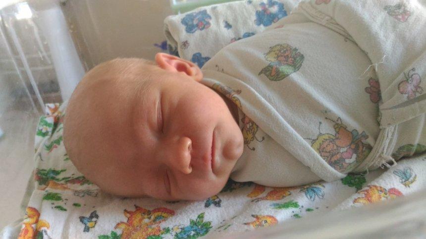 Отчёт по занятию 1 неделя жизни малыша в Wachanga!