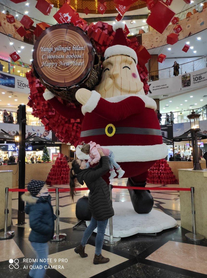 Отчёт по занятию Можно ли приглашать Деда Мороза на дом в Wachanga!