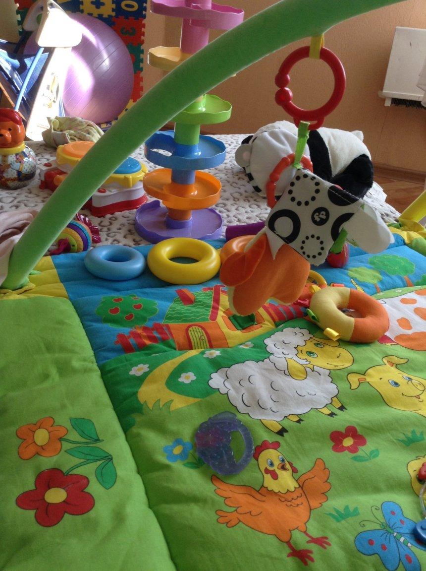Отчёт по занятию Где игрушка? в Wachanga!