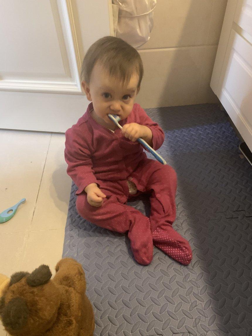 Отчёт по занятию Зубная щетка в Wachanga!