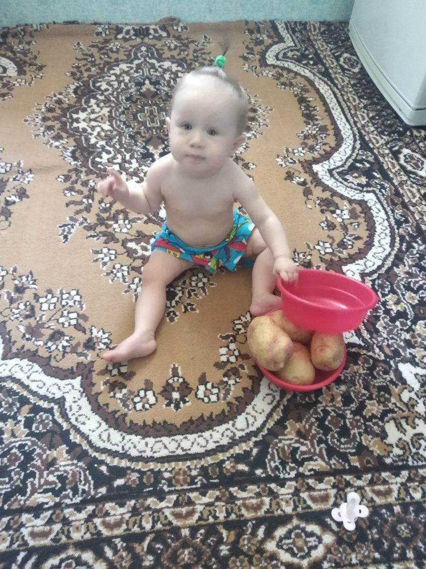 Отчёт по занятию Поиграйте с картошкой в Wachanga!