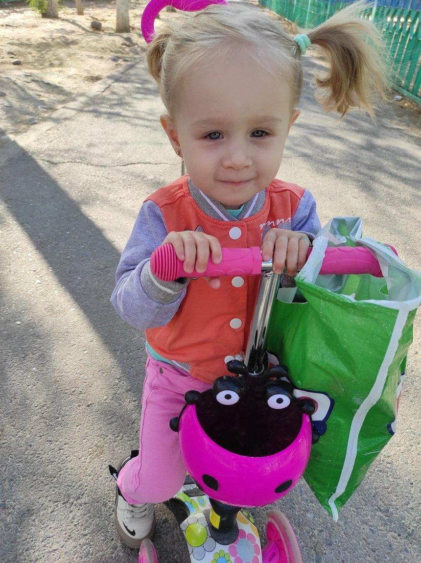 Отчёт по занятию Займитесь выращиванием гиацинтов в Wachanga!