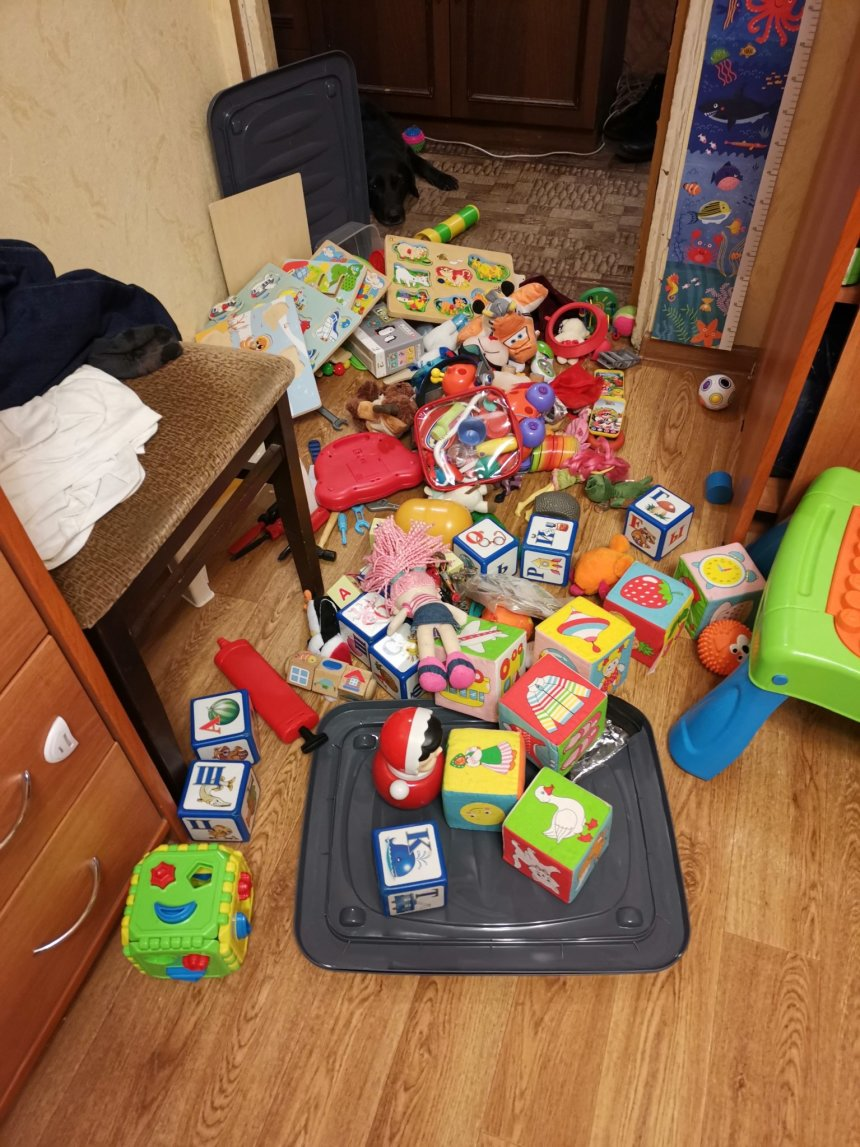 Отчёт по занятию Сколько игрушек нужно ребёнку в Wachanga!