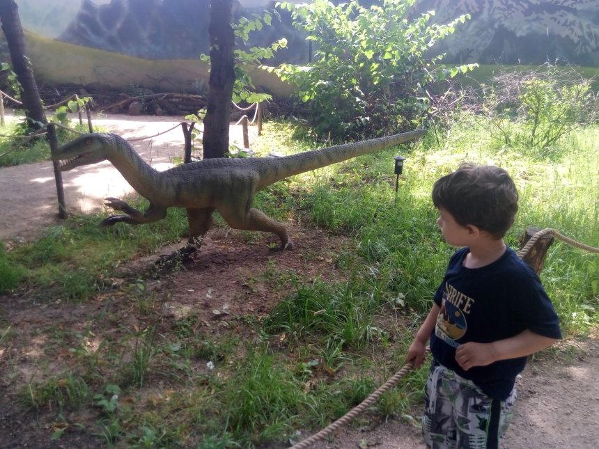 Отчёт по занятию Посетите вместе с ребенком динопарк в Wachanga!