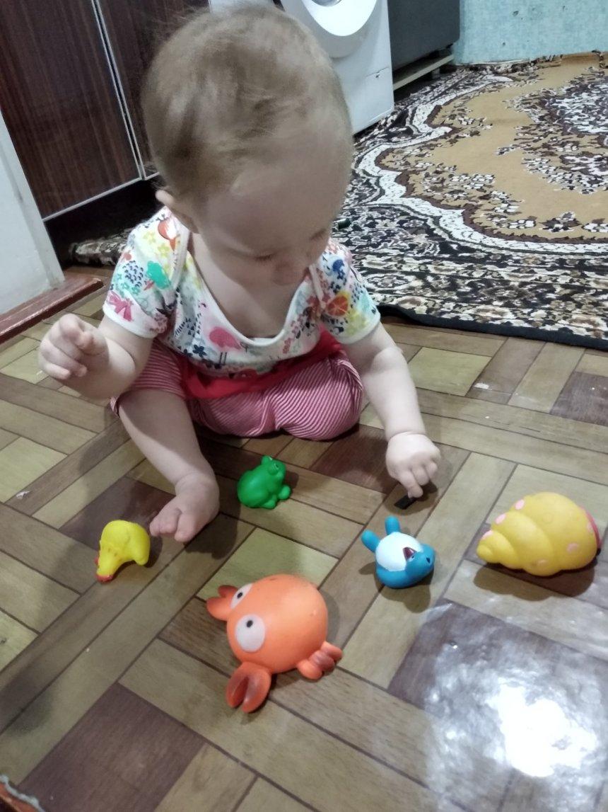 Отчёт по занятию Поиграйте с малышом в игру «Отклей игрушку»  в Wachanga!