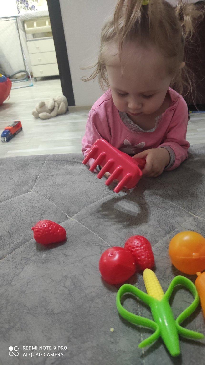 Отчёт по занятию Предложите малышу поиграть с маленькими грабельками  в Wachanga!