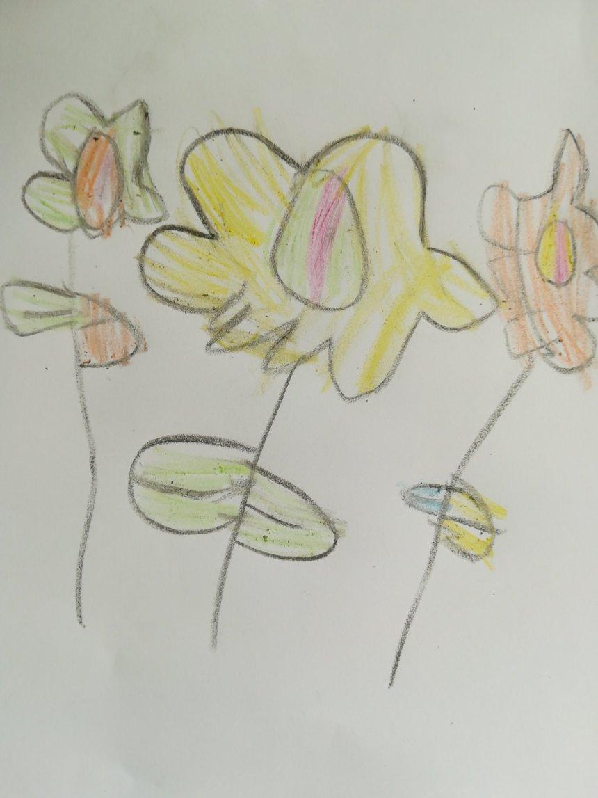 Отчёт по занятию Научите ребенка рисовать цветочки в Wachanga!
