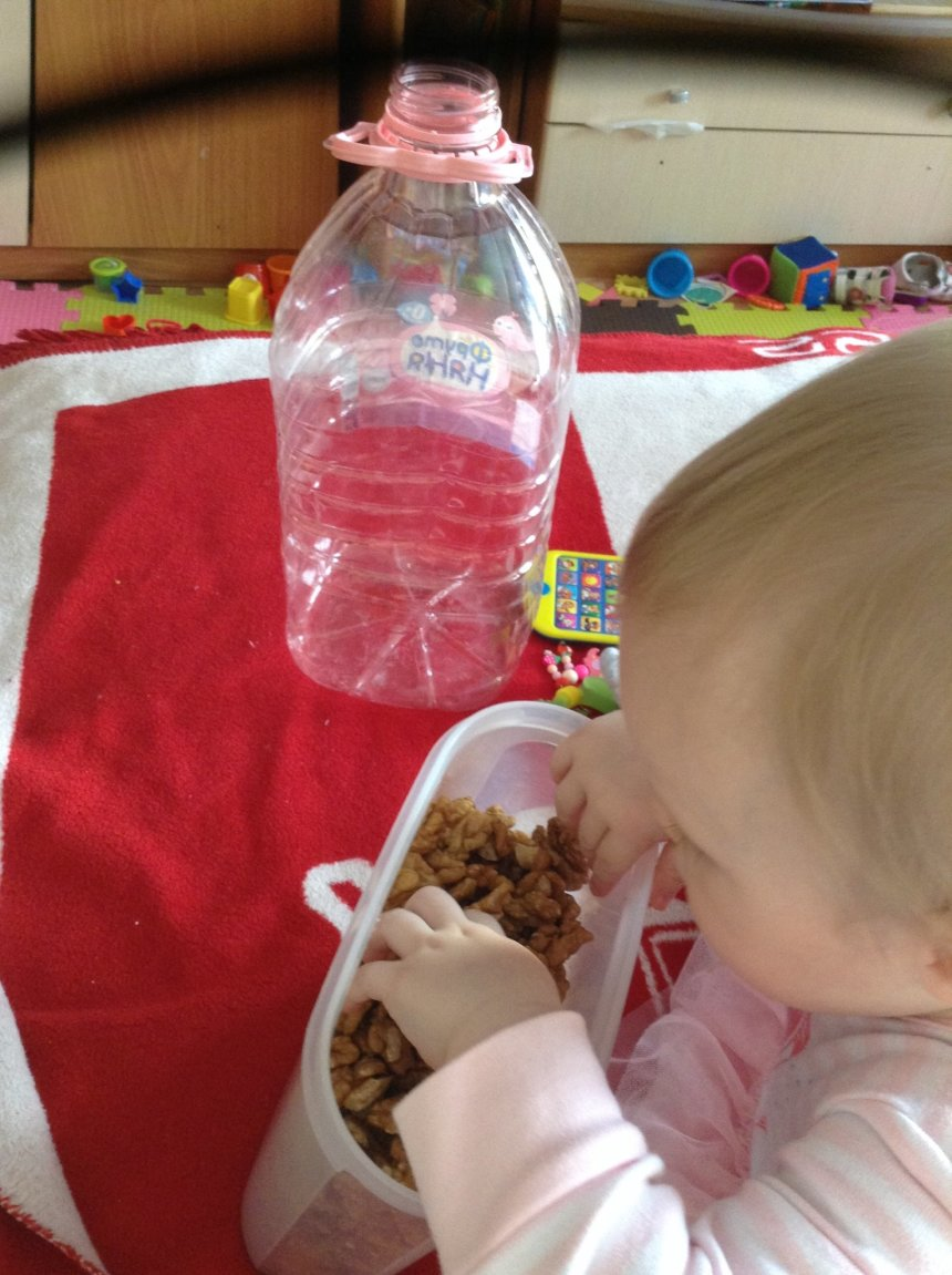 Отчёт по занятию Игра с грецкими орехами в Wachanga!