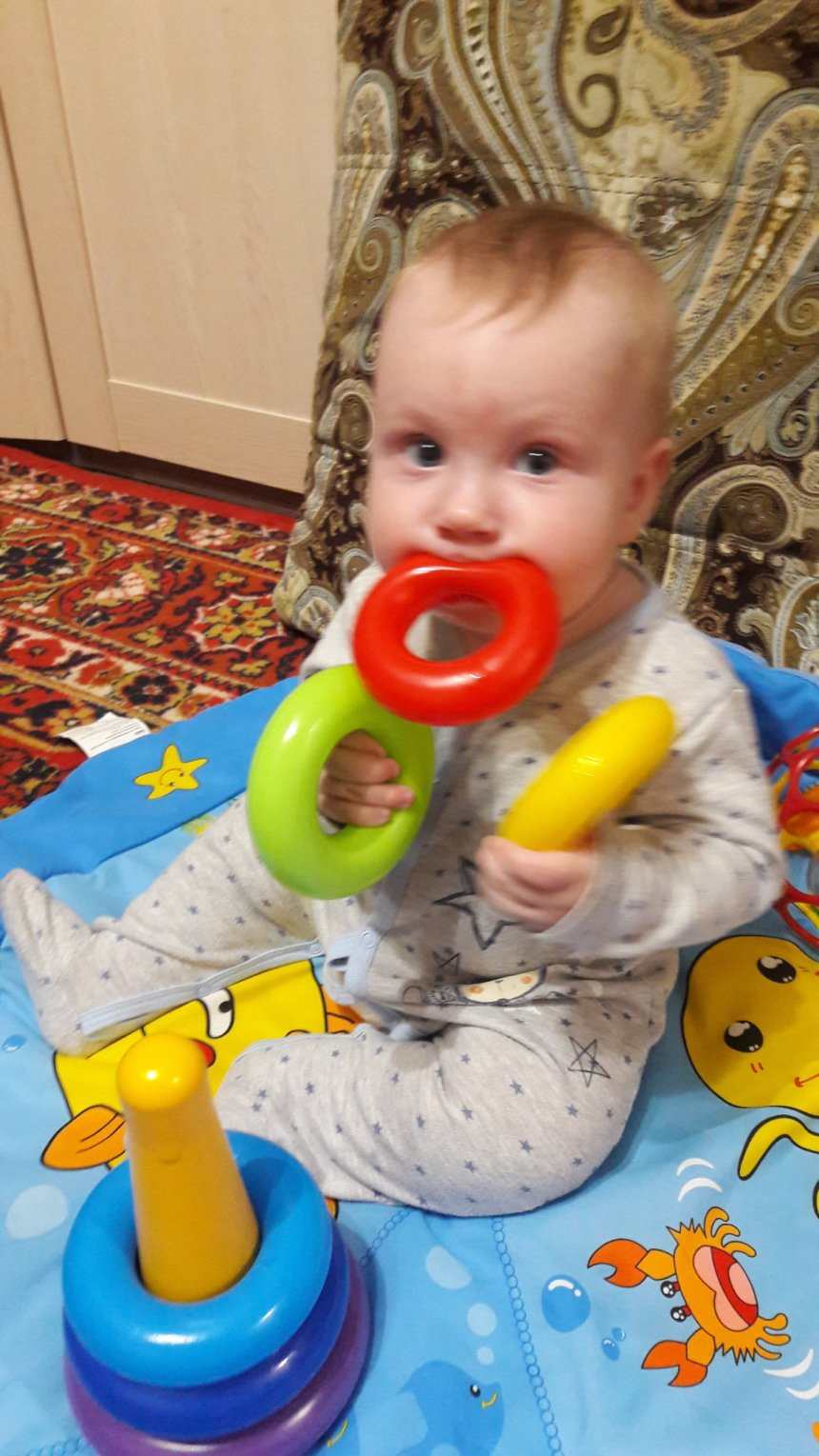 Отчёт по занятию Три игрушки в Wachanga!