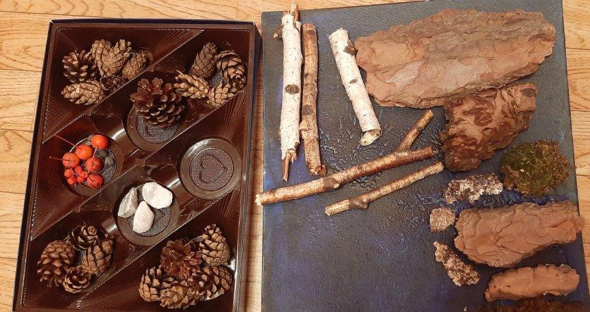 Отчёт по занятию Золотая осень: собираем природный материал в Wachanga!