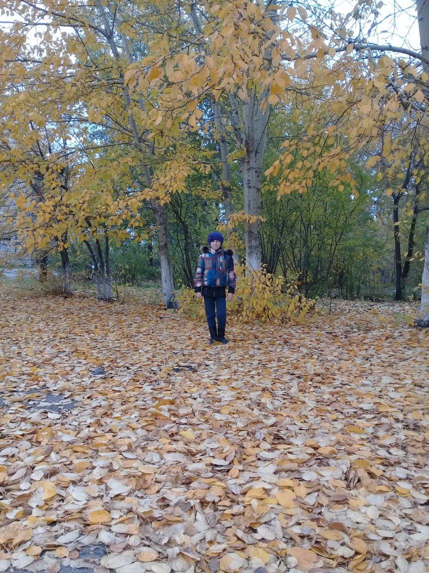 Отчёт по занятию Прогулка по осеннему лесу в Wachanga!