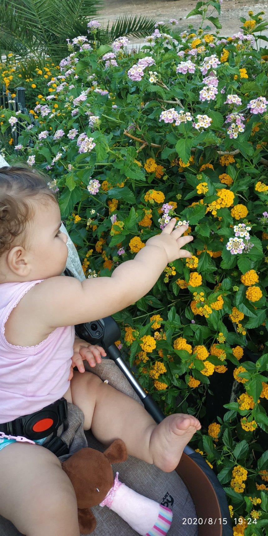 Отчёт по занятию Первые весенние цветы в Wachanga!