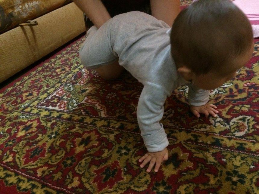 Отчёт по занятию Выполните вместе с малышом упражнение «тележка» в Wachanga!