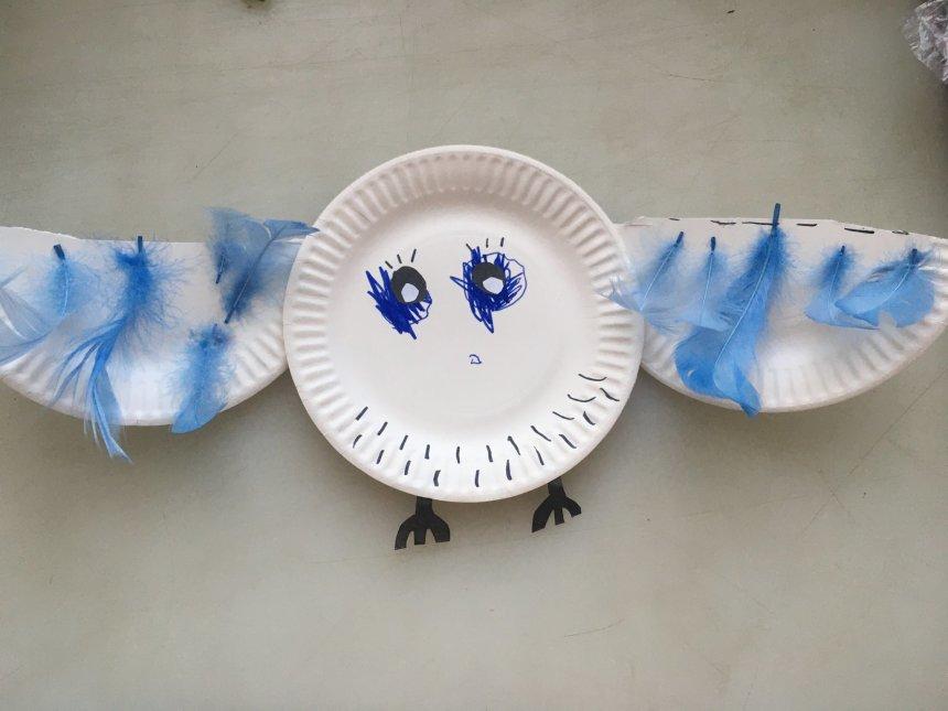 Отчёт по занятию Полярная сова из одноразовой тарелки в Wachanga!