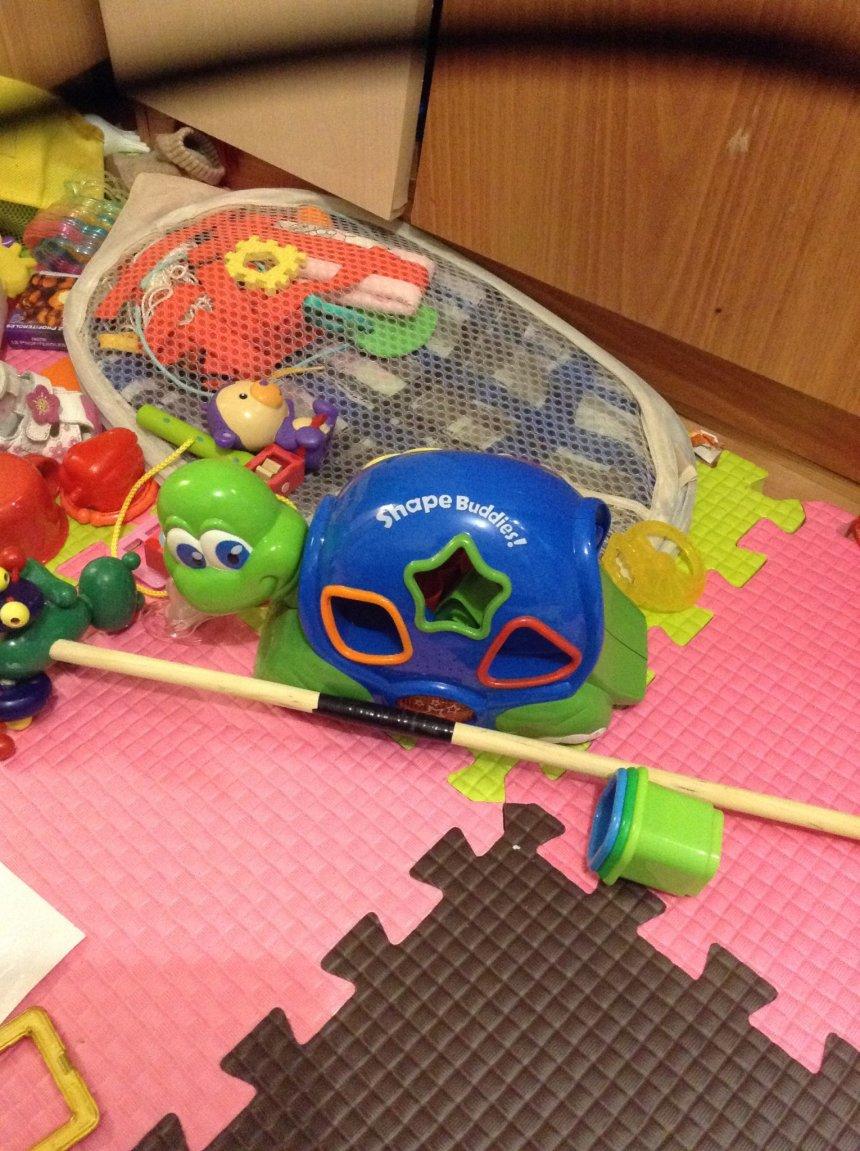 Отчёт по занятию Выбираем игрушки  в Wachanga!