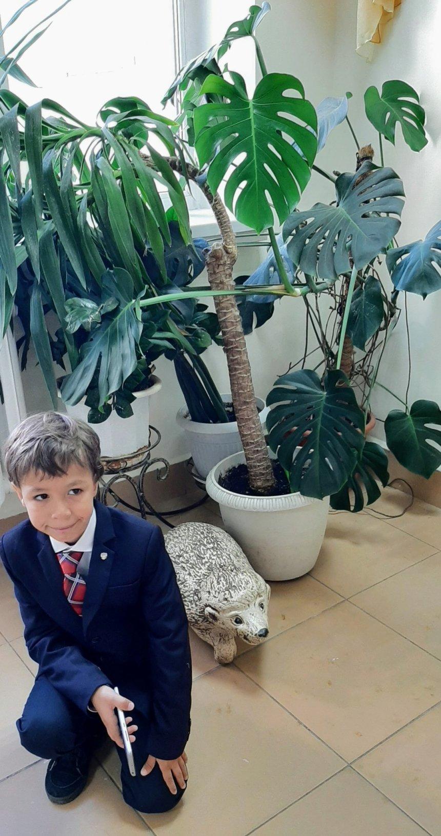 Отчёт по занятию Фотографируйте вместе с ребенком растения в Wachanga!