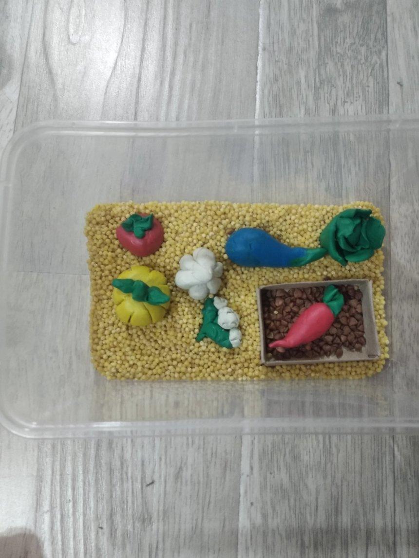 Отчёт по занятию Овощная сенсорная коробочка в Wachanga!