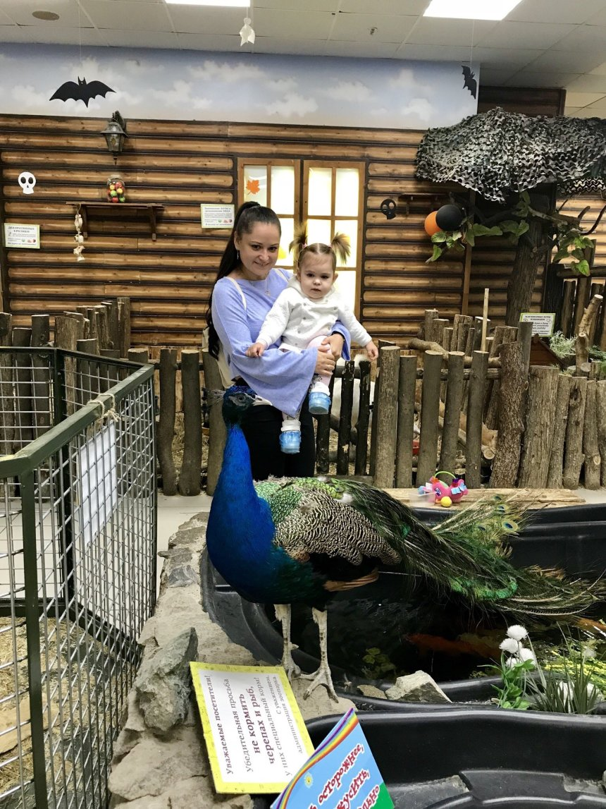 Отчёт по занятию Проводите время вместе с детьми в Wachanga!