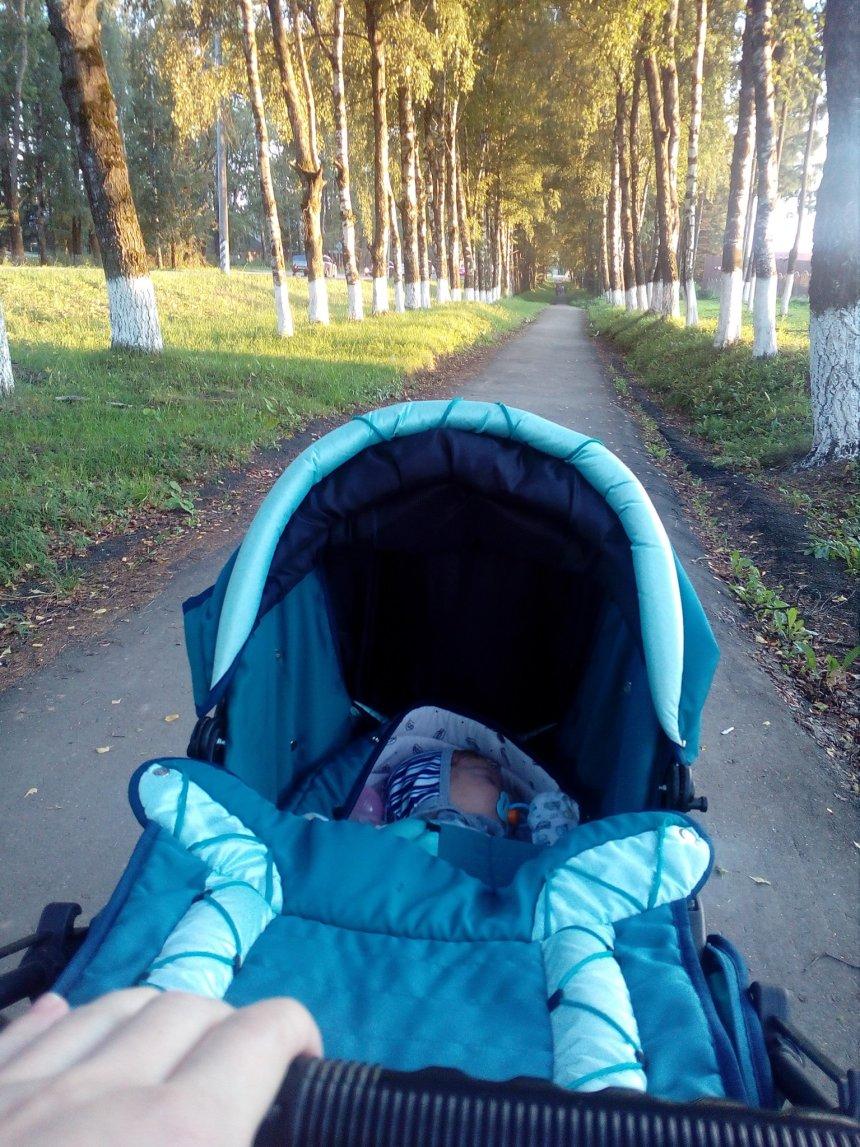 Отчёт по занятию Возьмите малыша на прогулку в Wachanga!