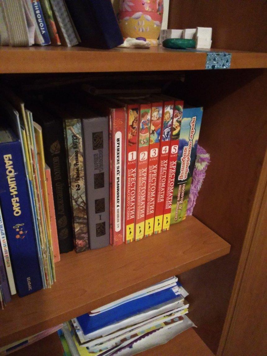 Отчёт по занятию Сходите с ребенком библиотеку в Wachanga!