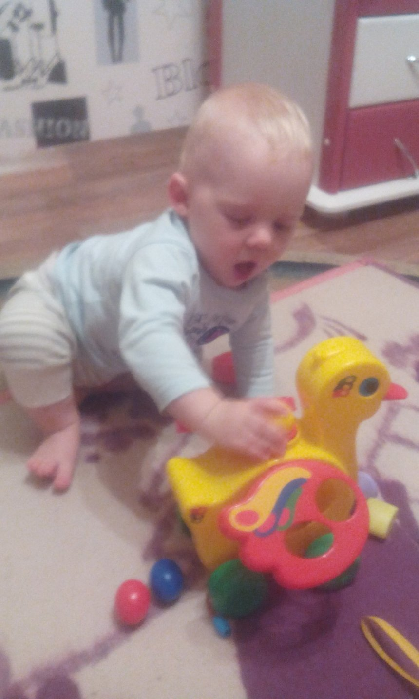 Отчёт по занятию Любимые игрушки в Wachanga!