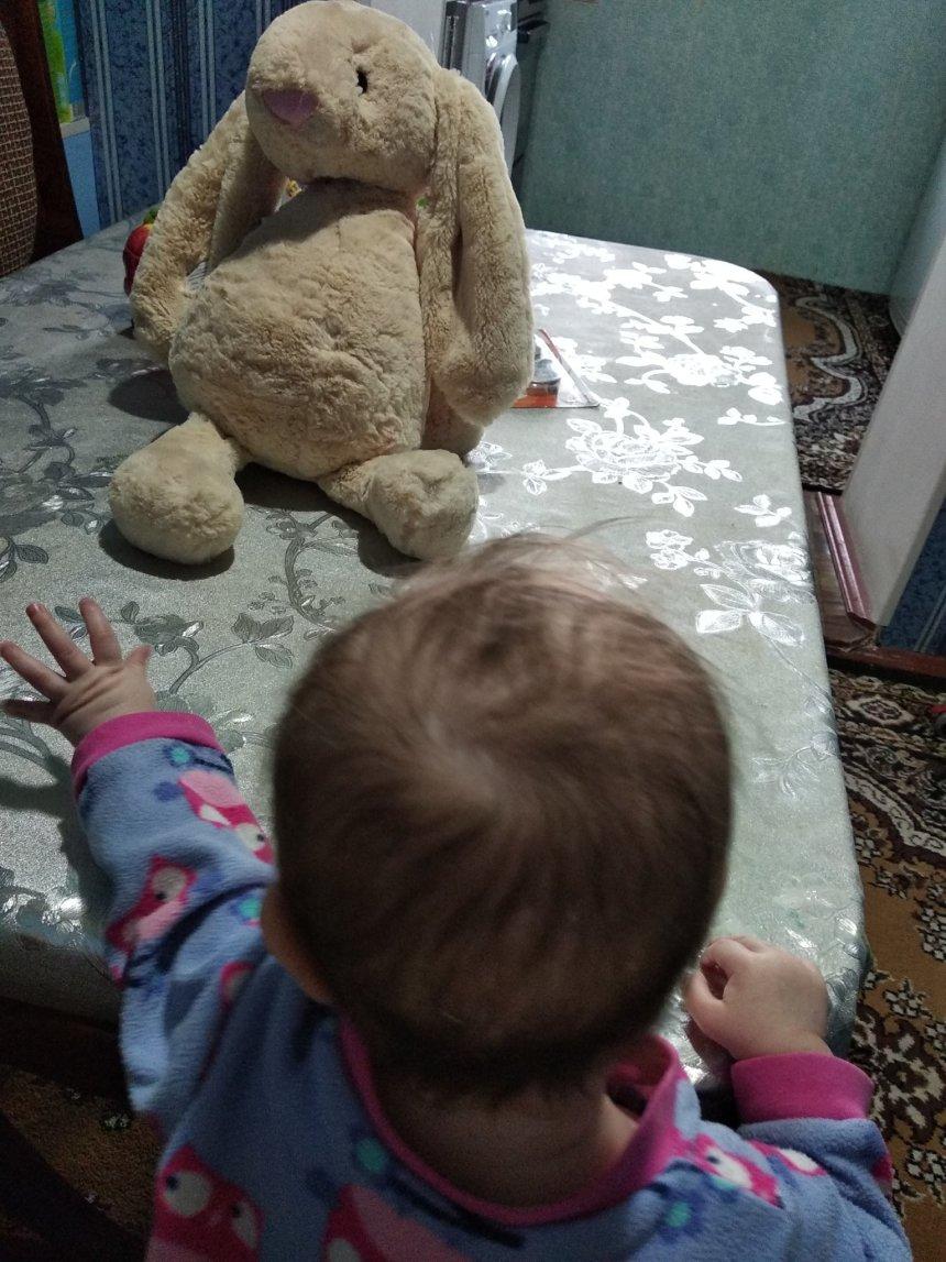 Отчёт по занятию Роняем игрушки в Wachanga!