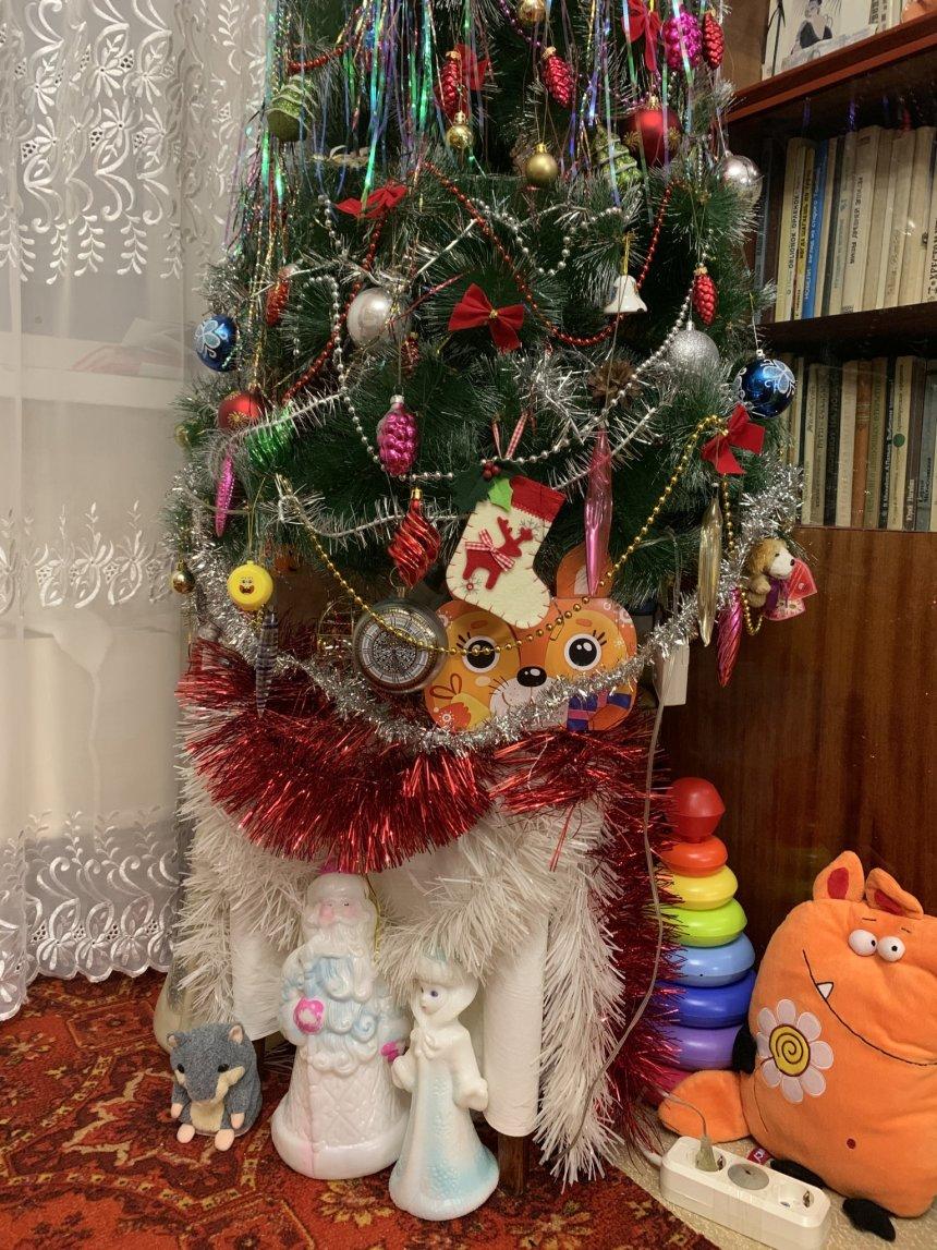 Отчёт по занятию Письмо Деду Морозу! Как и с кем его писать? в Wachanga!