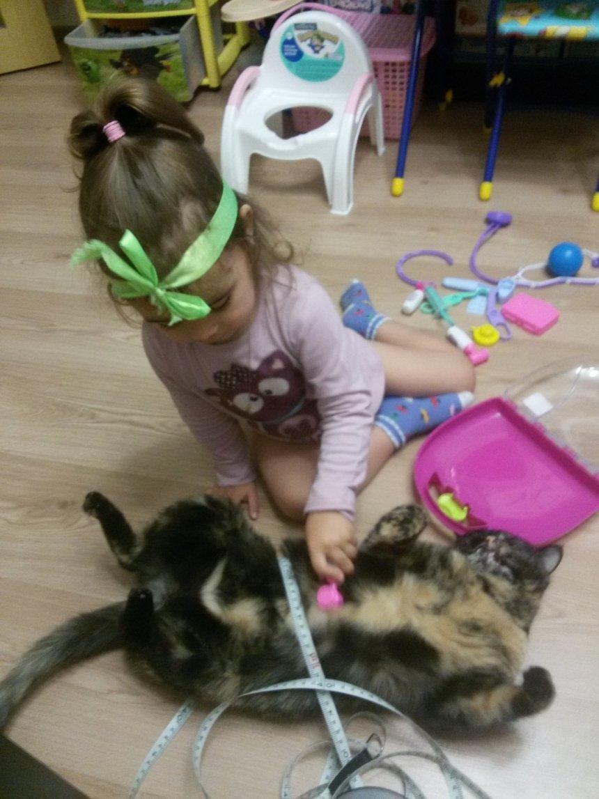 Отчёт по занятию Поиграйте вместе с ребенком в ветеринарную клинику  в Wachanga!
