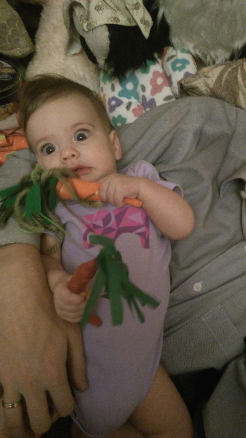 Отчёт по занятию Мягкая морковка в Wachanga!