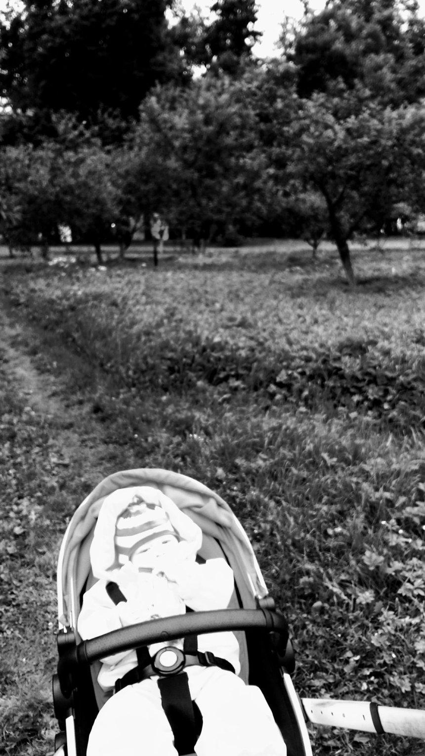 Отчёт по занятию Черно-белая фотосессия в Wachanga!
