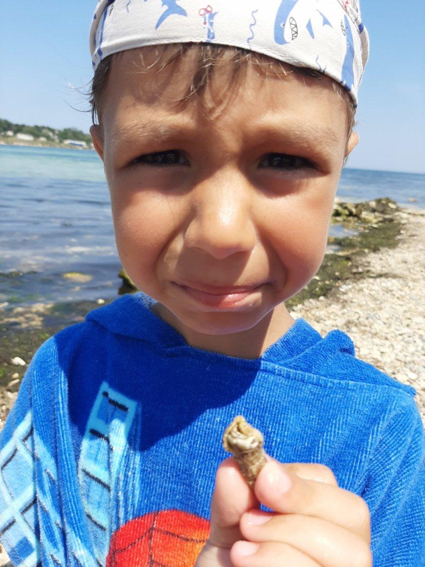 Отчёт по занятию Возьмите с собой игрушки на пляж в Wachanga!